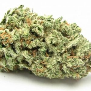 AK-47 Strain For Sale