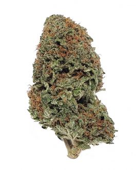 NYC Diesel Strain For Sale
